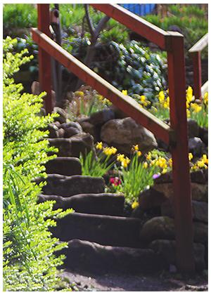 geddes garden grassmarket edinburgh